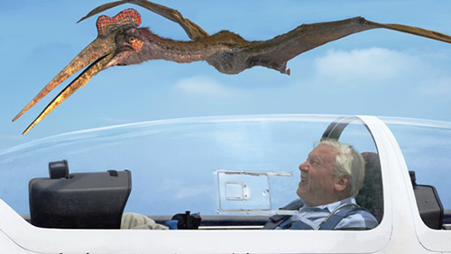 david attenborough and quetzalcoatlus