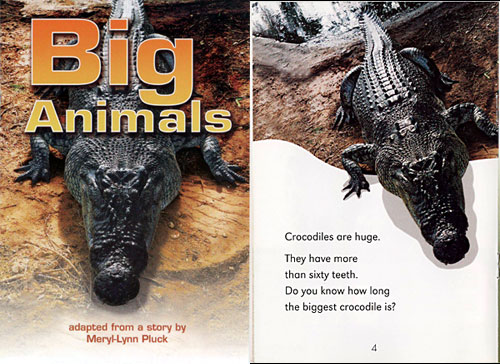 big animals book