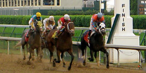 horse race finish line