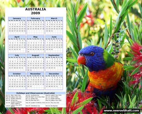 2009 Lorikeet Photo Calendar with Australian Public Holidays
